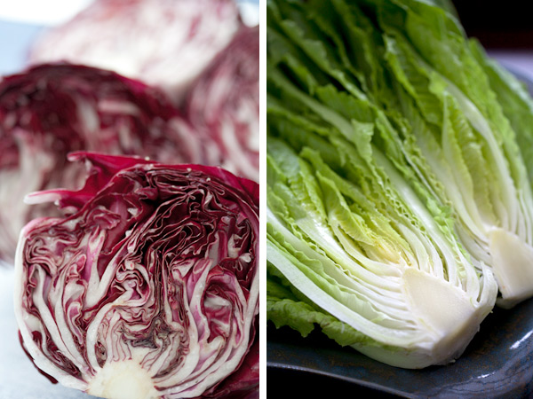 Radicchio and romaine lettuce